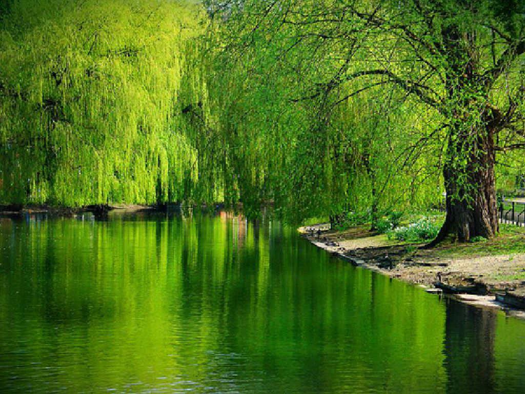 lakes desktop wallpaper hd - photo #34