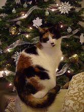 Christmas Ella