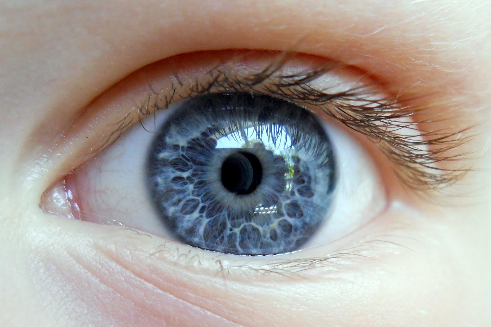Jennifer Murch: Eyebal...
