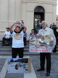 29 de Abril - Día del Animal - Caballos Libres Córdoba