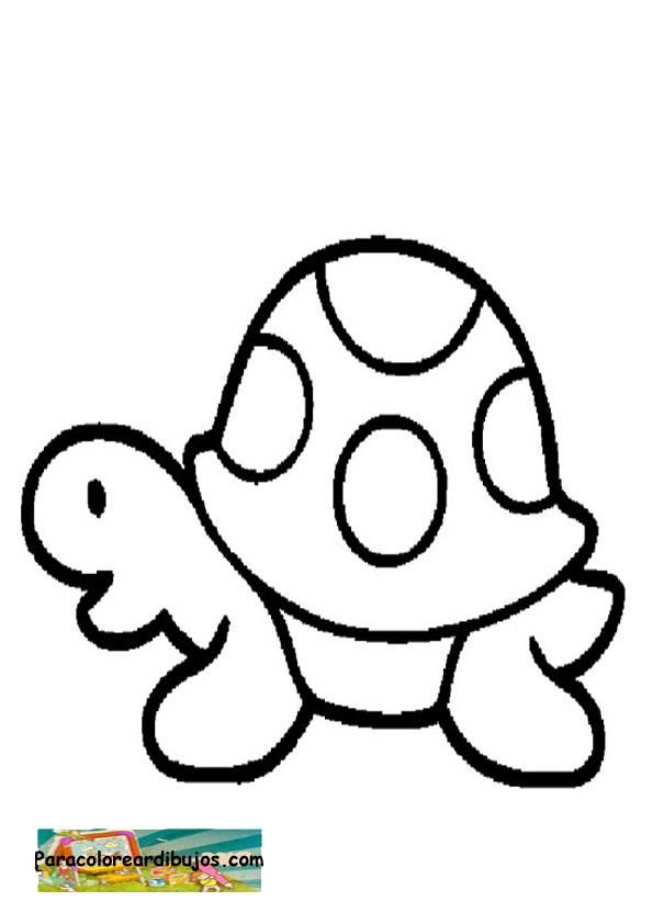 Para colorear dibujo de tortuga | Para colorear dibujos y dibujos