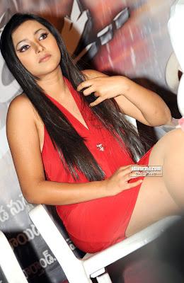 Shweta Basu Hot Pictures  swethaprasad006