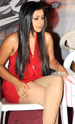 Shweta Basu Hot Pictures  swethaprasad015