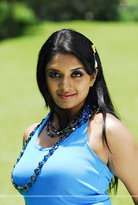 South Indian Actress Vimala Raman Hot Pictures  vimalaraman810