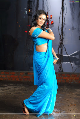 South Indian Actress Vimala Raman Hot Pictures  vimalaraman825