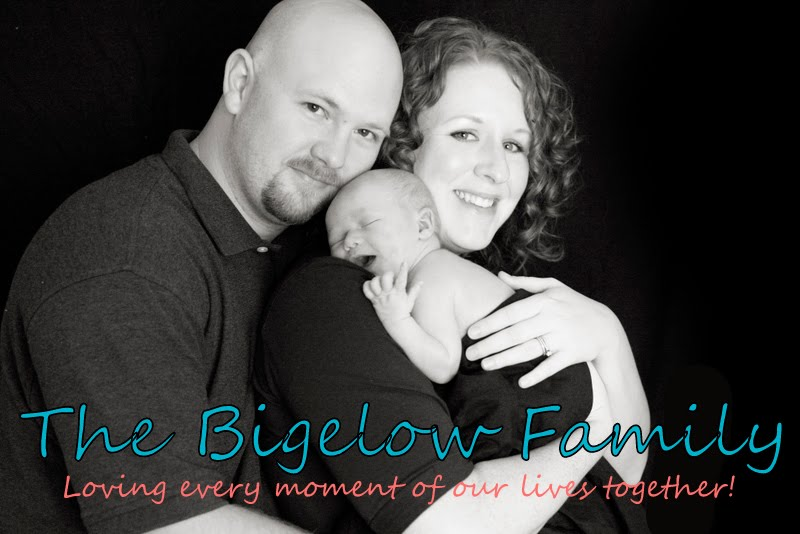 The Bigelow Family