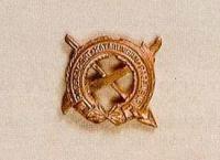 Inspector General's Badge