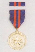 Anti-Dissidence Campaign Medal