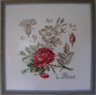 Une nouvelle Rose de Véronique Enginger La+Rose