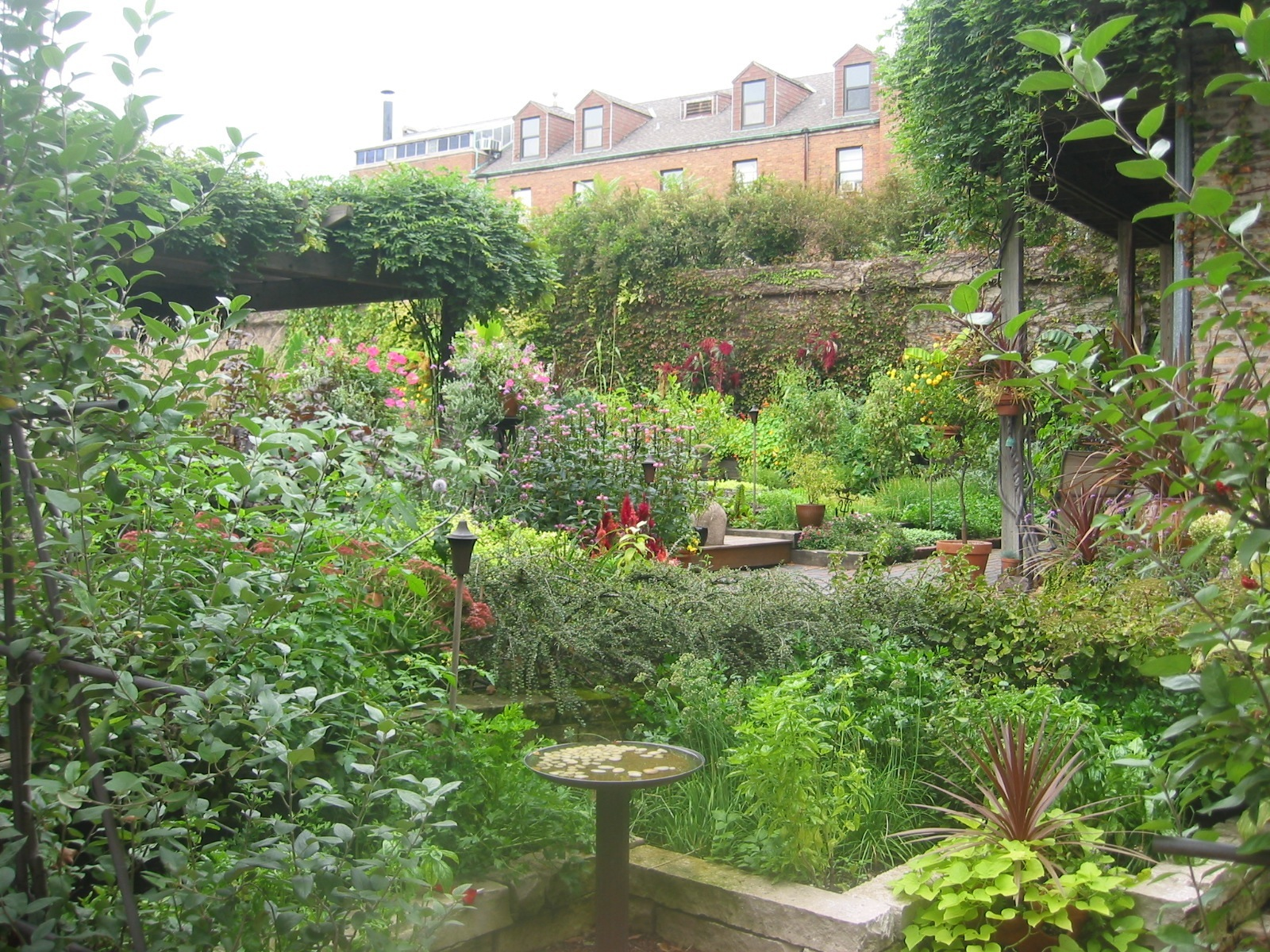 A peek into the garden