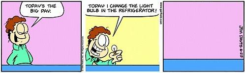 Garfield minus Garfield - changing bulbs