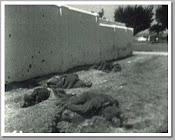 FUSILAMIENTOS TAPIAS CEMENTERIO BADAJOZ. AGOSTO 1936