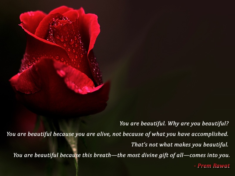 You Are Beautiful Quotes For Her. QuotesGram