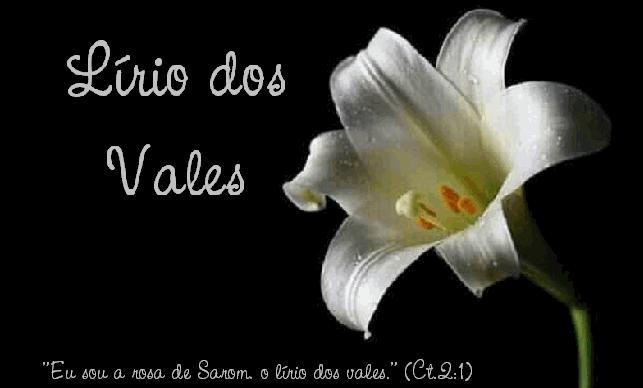 jardim rosas de saron:Jesus a Rosa de Saron: Junho 2010