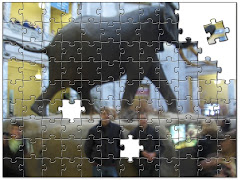 Puzzleing