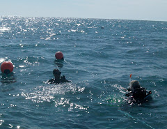 Linda and Patrick prepare to dive into the Atlantic Ocean
