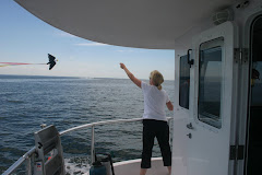 Flying Ernie the Eagle on LI Sound