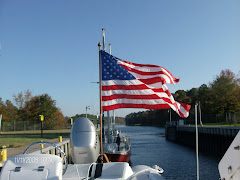 Celebrating Veteran's Day in the Dismal Swamp