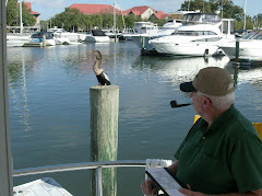 Fred and his buddy enjoying the stern deck and the dock post at high tide.