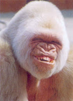 ..:Smile..: