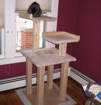 M s ideas para fabricar un bonito rbol para gatos - Casas para gatos baratas ...