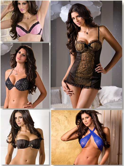 Playboy Lingerie HD Pictures Pack