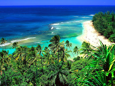 hawaii beaches wallpaper. Hawaii Wallpapers part 2