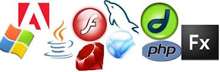 Adobe Flash, Flex, PHP, MySQL, ASP.NET, Ruby