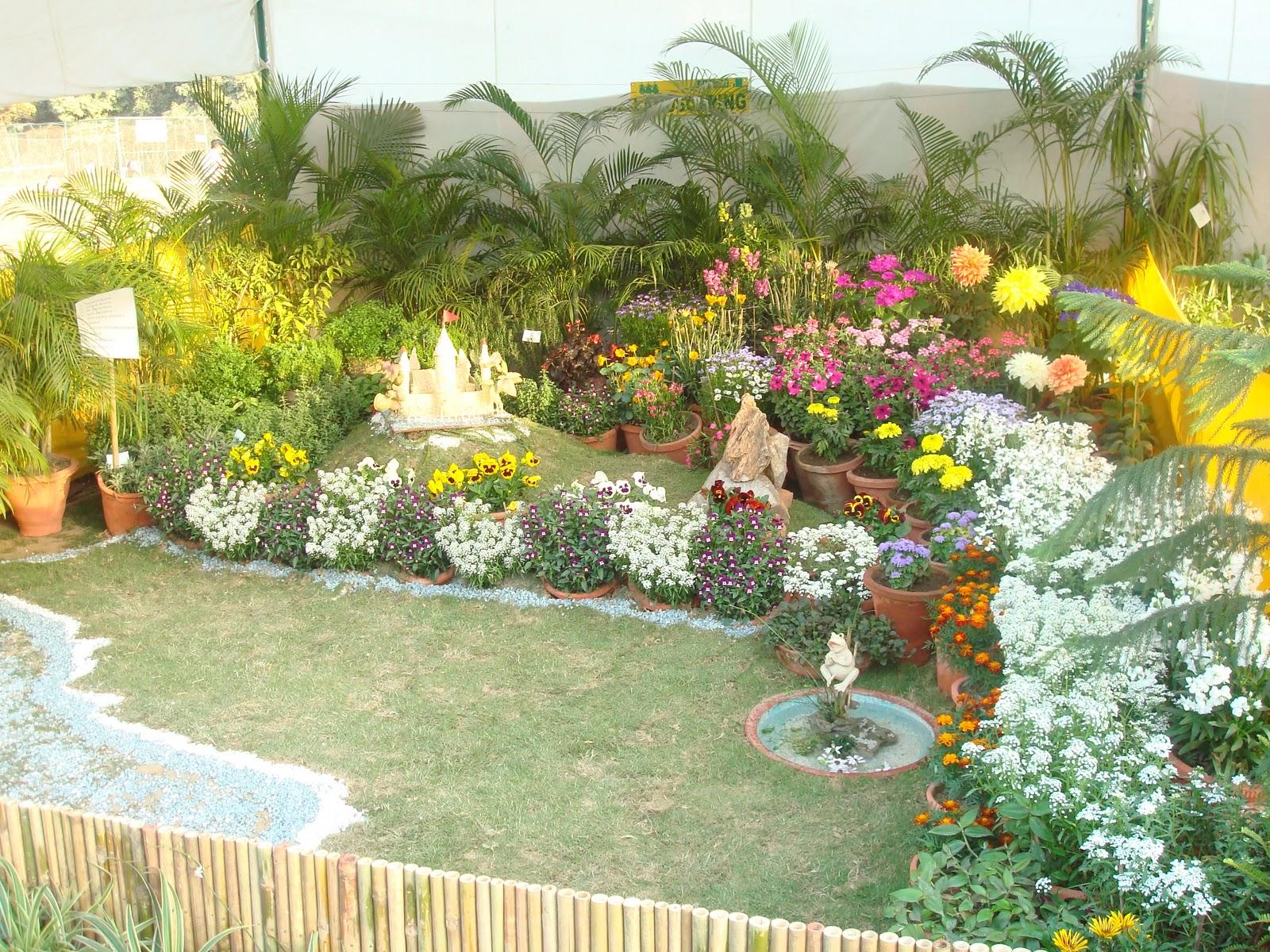 Kitchen Garden In India Dwarka Parichay News Info Services January 2011