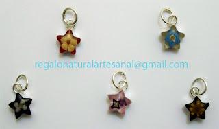 colgante estrella con flores naturales plata