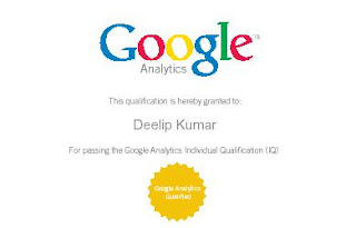 Google Analytics Professional