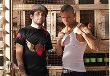 Llega nuevo disco de Calle 13