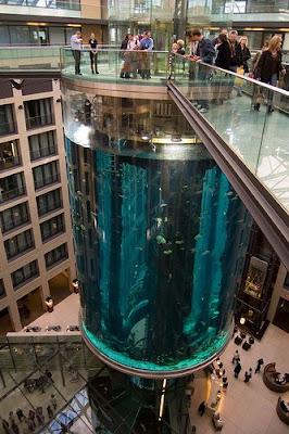 ellergy aquariums that fish for compliments 15 unique fish tanks. Black Bedroom Furniture Sets. Home Design Ideas