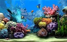 wahana dalam laut