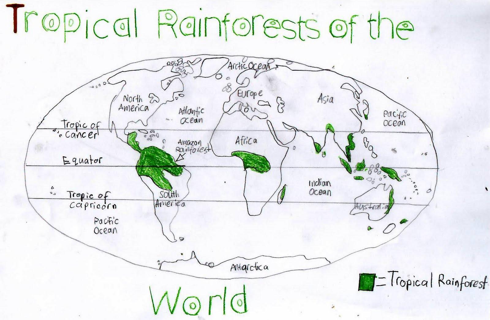 Australian Desert Rainforest Map Ecosia