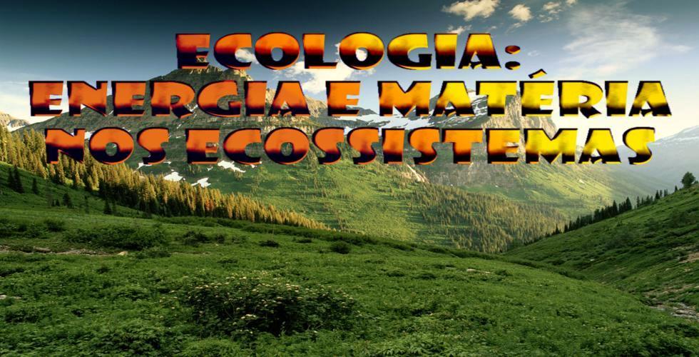Ecologia: Energia e Matéria nos Ecossistemas