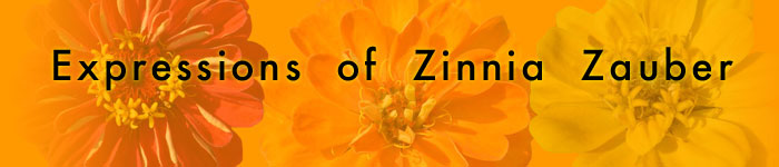 Expressions of Zinnia Zauber