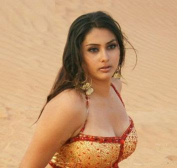 South Indian Actress, Hot and Sexy Namitha Gallery and Hot Pictures