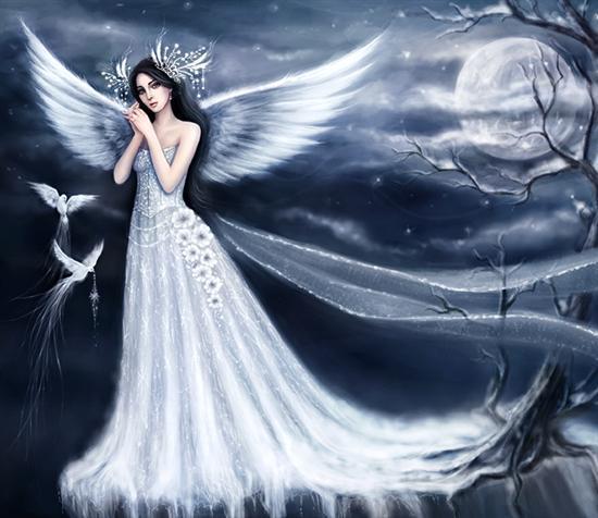 hadas y poesias de halc n y luna tu mundo de fantasia
