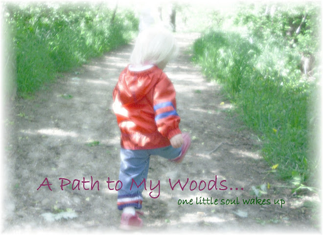 A Path to My Woods