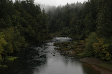 The Umpqua