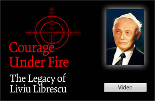 Professor Liviu Librescu Video