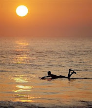The Sun Rises Over Jupiter Island