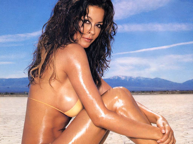Hot Bikini Brooke Burke