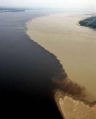 external image confluencia-negro-Amazonas.jpg