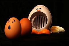 [egg+chase.jpg]