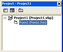 Visual Basic Project Explorer Window