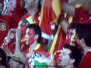 Euro 2008 :  Spainsh Fans