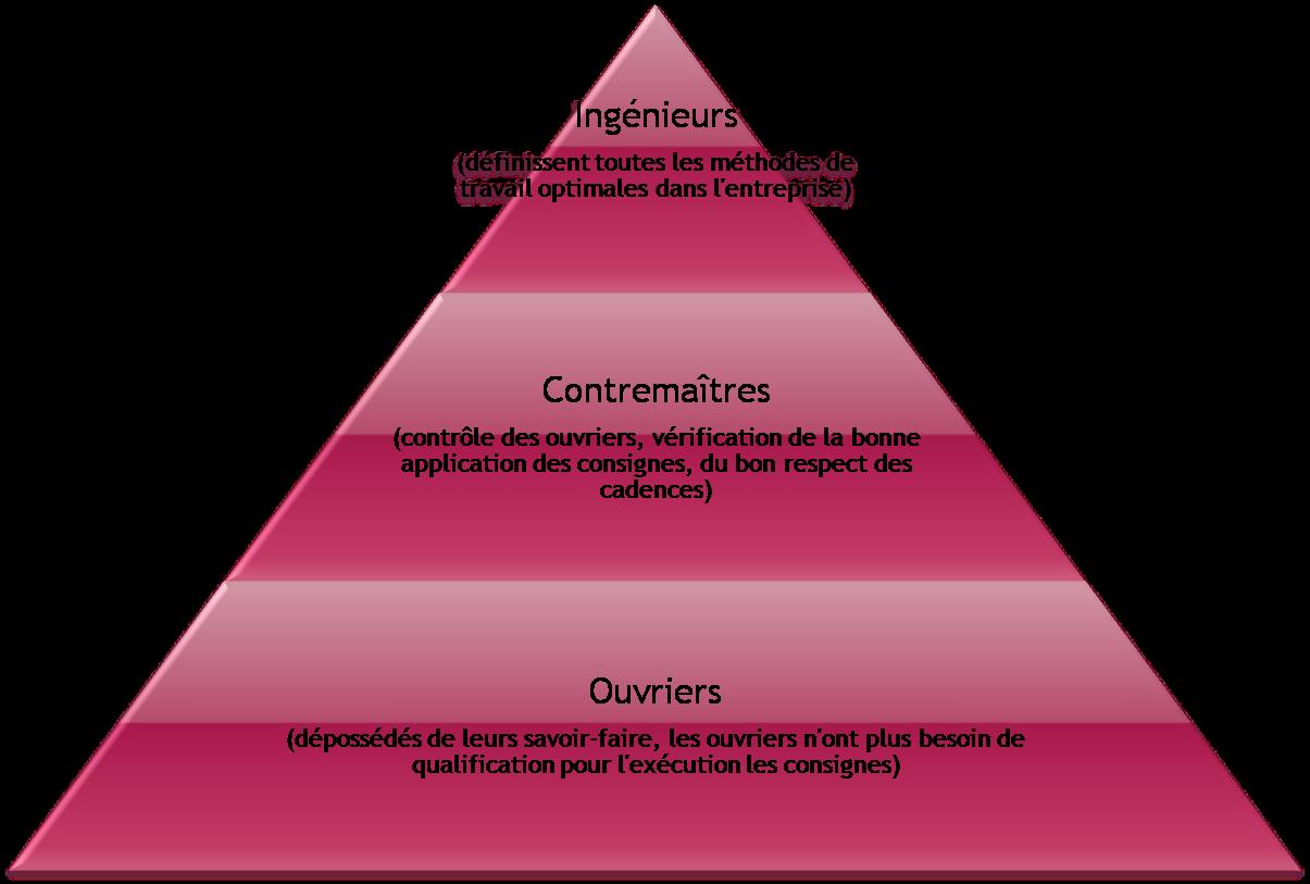 Taylorisme for A la verticale du jardin grenoble