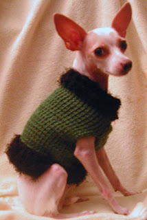 Dog Sweater made for a chihuahua